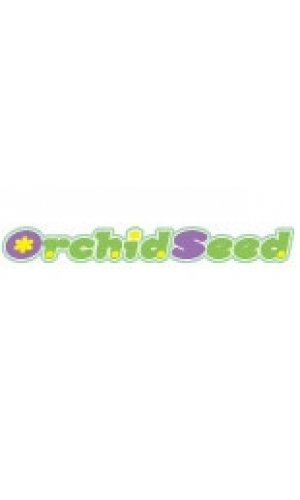 orchid seed