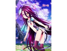 預訂 9月 日版 Curtain Tamashii No Game No Life 遊戲人生 Zero Original Illustration B2 Tapestry Schwi 休比 2